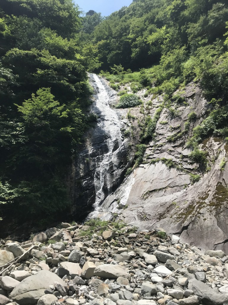 s-蜀咏悄 2018-07-15 11 42 54