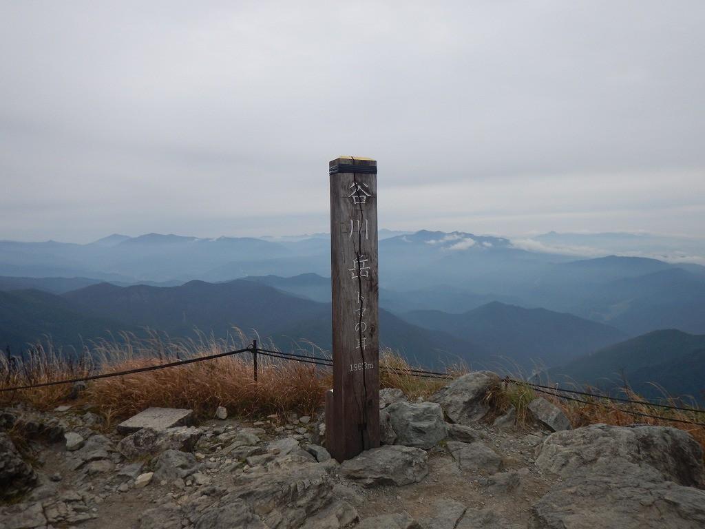 s-蜀咏悄 2020-10-03 14 33 41